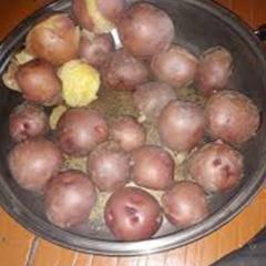 감자 특산품